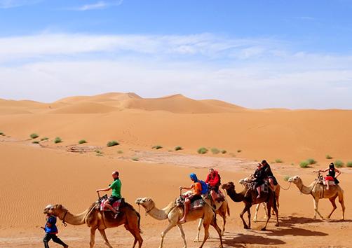 Sahara Express Desert Trip